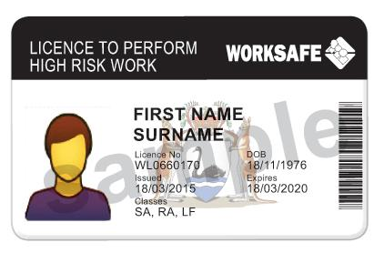 high risk licence card